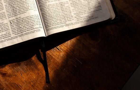 2020年11月8日 主日礼拝(朝・夕拝)説教 「信仰のない私をお助けください」